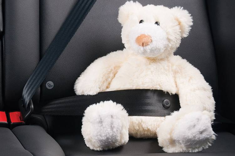 White teddy bear strapped in a seat belt.